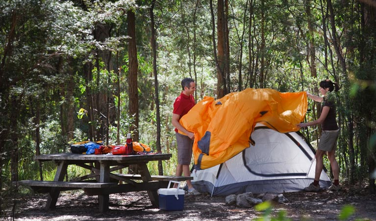 Bald Rock campground and picnic area - VIC Tourism