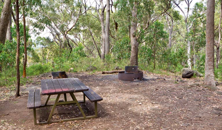 Bark Hut picnic area and campground - VIC Tourism