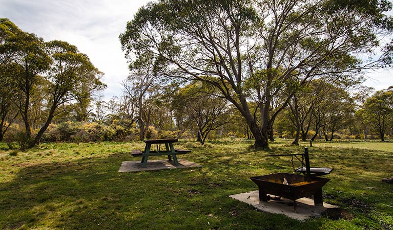 Little Murray campground - VIC Tourism