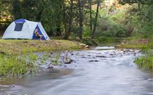 Nymboida Camping  Canoeing - VIC Tourism