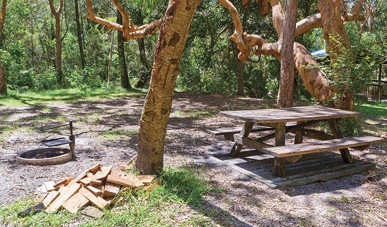 Station Creek campground - VIC Tourism