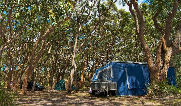 Stewart and Lloyds campground - VIC Tourism