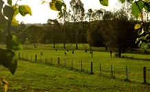 Stone Cottage Mittagong - VIC Tourism