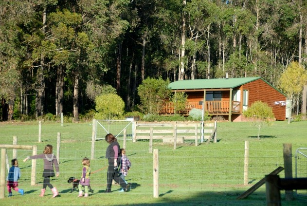 Diamond Forest Cottages Farmstay - VIC Tourism