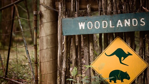 Woodlands Rainforest Retreat - VIC Tourism