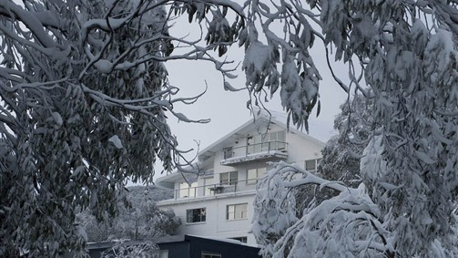 Attunga Alpine Lodge and Apartments - VIC Tourism