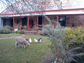 Liebelt House - VIC Tourism