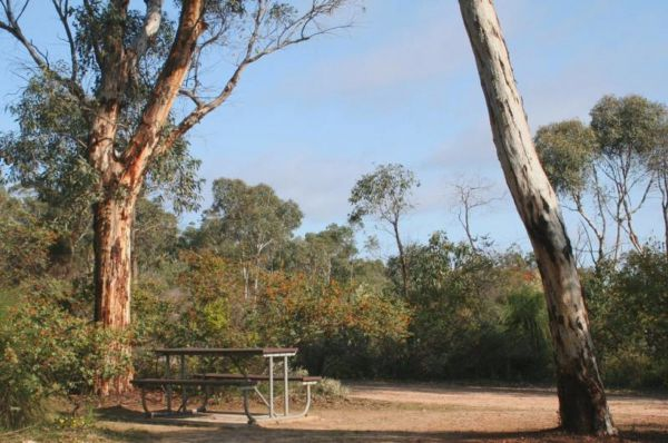 Drummonds Camp at Avon Valley National Park - VIC Tourism