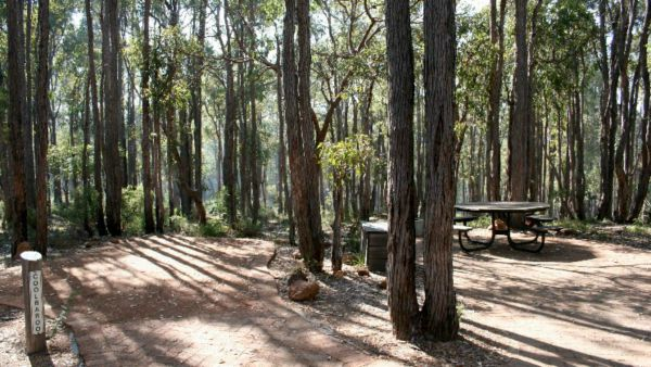 Perth Hills Centre Campground at Beelu National Park - VIC Tourism