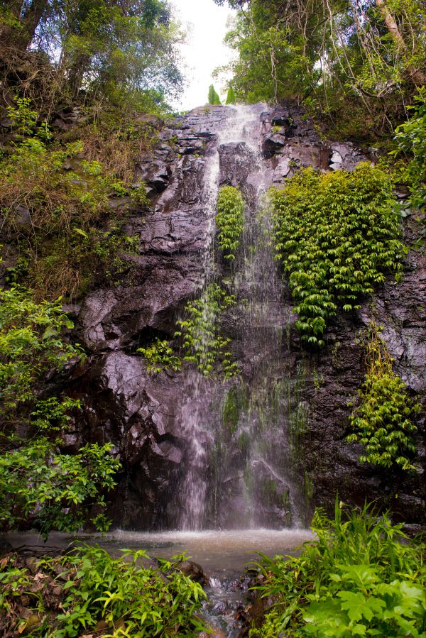 Nimbin Waterfall Retreat