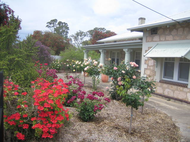 MacDonnell House (Naracoorte Cottages)