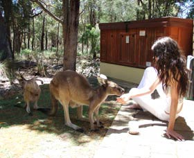 Yelverton Brook Eco Spa Retreat and Conservation Sanctuary - VIC Tourism