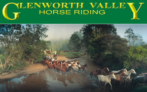 Glenworth Valley Horseriding - VIC Tourism