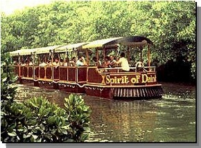 Daintree Rainforest River Trains - VIC Tourism