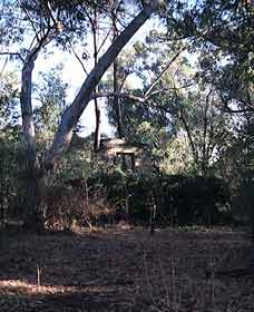 Ghost House Walk Trail Yanchep National Park - VIC Tourism