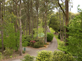 Mount Lofty Botanic Garden - VIC Tourism