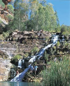 Fortescue Falls - VIC Tourism