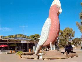 The Big Galah - VIC Tourism