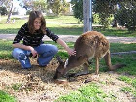 Pendleton Farmstay - VIC Tourism