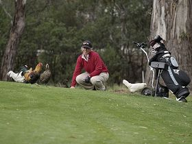 Tasmania Golf Club - The - VIC Tourism