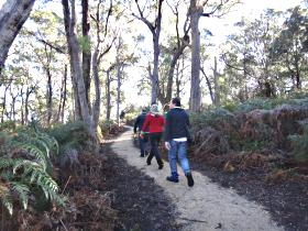 Bridport Walking Track - VIC Tourism