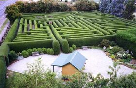 Westbury Maze and Tea Room - VIC Tourism