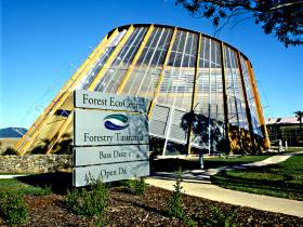 Forest EcoCentre - VIC Tourism