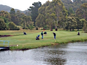 Penguin Golf Course - VIC Tourism