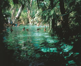 Mataranka Thermal Pool - VIC Tourism