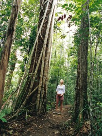 Wet Tropics - VIC Tourism
