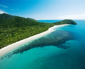 Cape Tribulation Daintree National Park - VIC Tourism