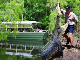 Hartleys Crocodile Adventures - VIC Tourism