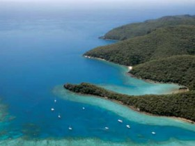 Butterfly Bay - Hook Island - VIC Tourism