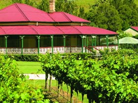OReillys Canungra Valley Vineyards - VIC Tourism