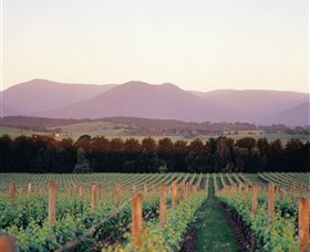 Domaine Chandon - VIC Tourism