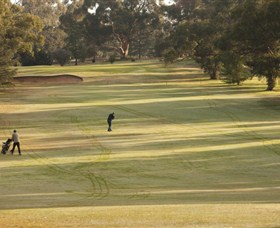 Cohuna Golf Club - VIC Tourism