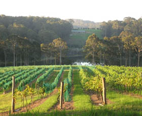 Tilba Valley Wines - VIC Tourism
