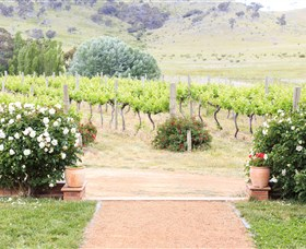 Brindabella Hills Winery - VIC Tourism