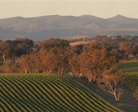 Angullong Wines - VIC Tourism