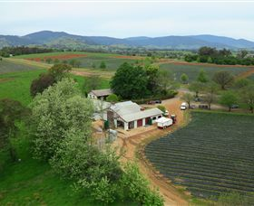 Schmidts Strawberry Winery - VIC Tourism