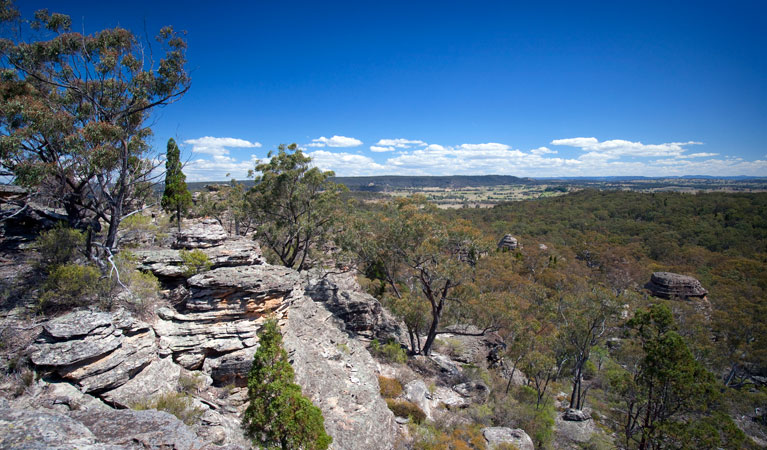 Munghorn Gap Nature Reserve - VIC Tourism
