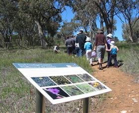 South Gundagai Woodlands Walk - VIC Tourism