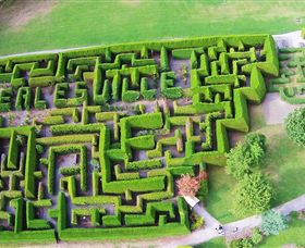 Hedgend Maze and Healesville Laser Sport - VIC Tourism