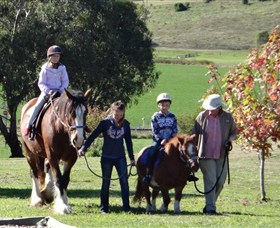 Bathurst Farm Experience - VIC Tourism