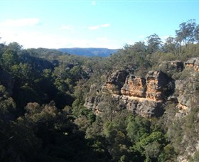 Ferntree Gully Reserve - VIC Tourism