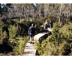 Hume and Hovell Walking Track - Henry Angel Trackhead - VIC Tourism