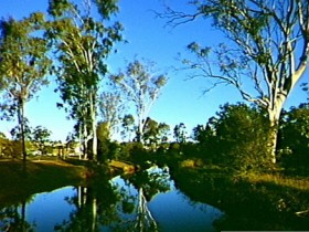 Dingo Creek Park - VIC Tourism