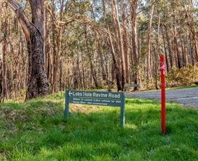 Lobs Hole Ravine 4WD Trail - VIC Tourism