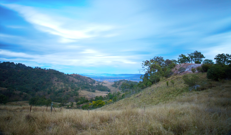 Burning Mountain Nature Reserve - VIC Tourism