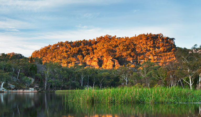 Wollemi National Park - VIC Tourism